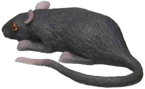 Halloween Decor Mouse