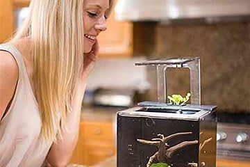 Fish Tank For Living Office